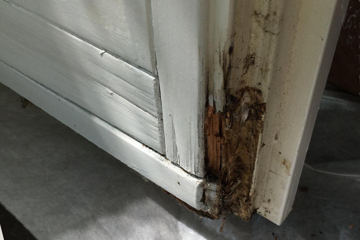 Wasserschaden an Fenster